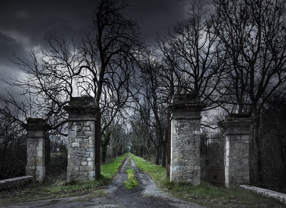 kid friendly ghost tour haunted gate leading to creepy halloween forest