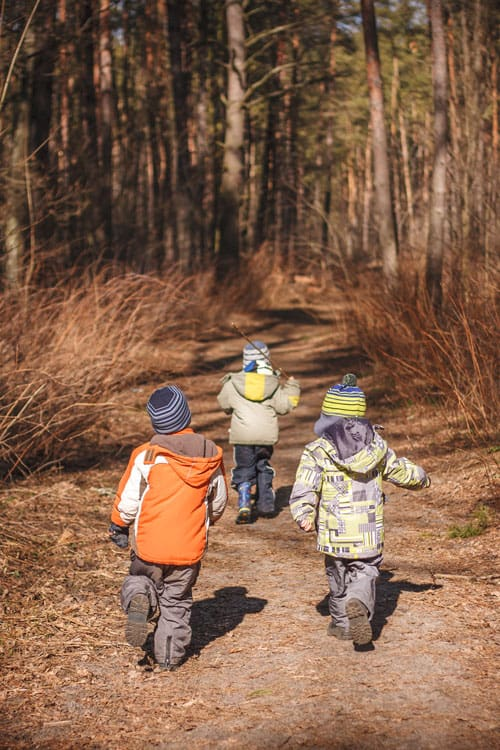 three children hiking in the forest on a backpacking trip