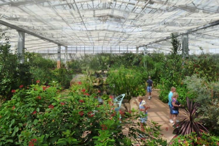 butterfly garden phoenix arizona