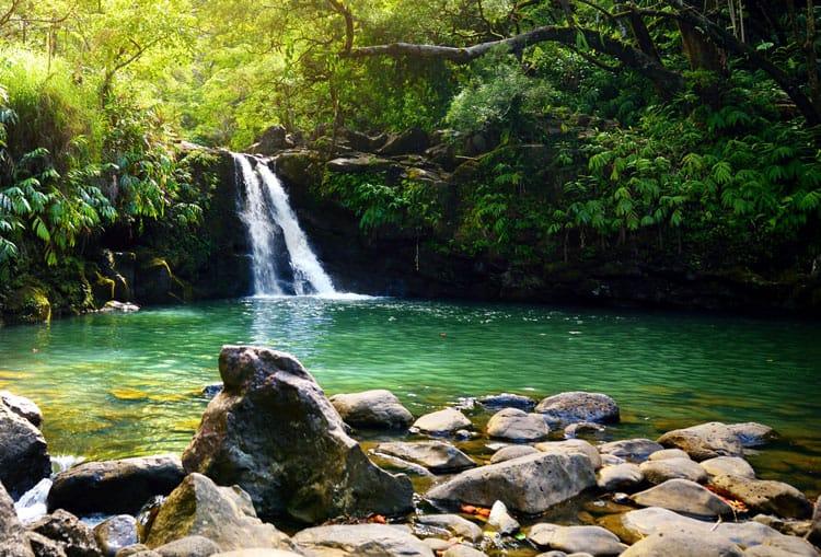 waterfall in maui