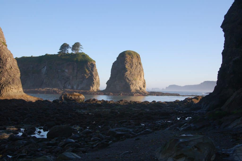 Olympic National Park Sea Stacks