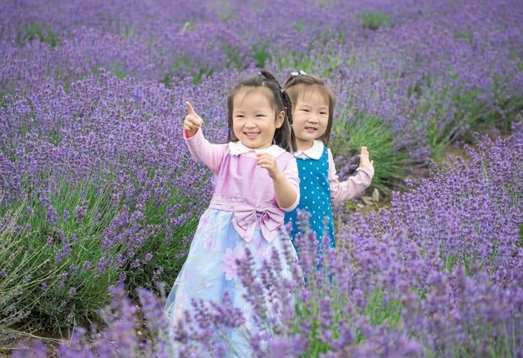 little girls in maui lavender field