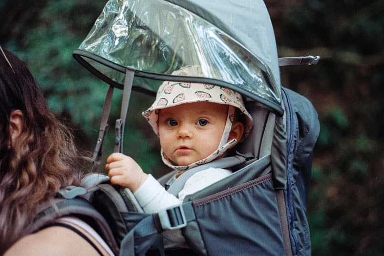 baby in a hiking carrier