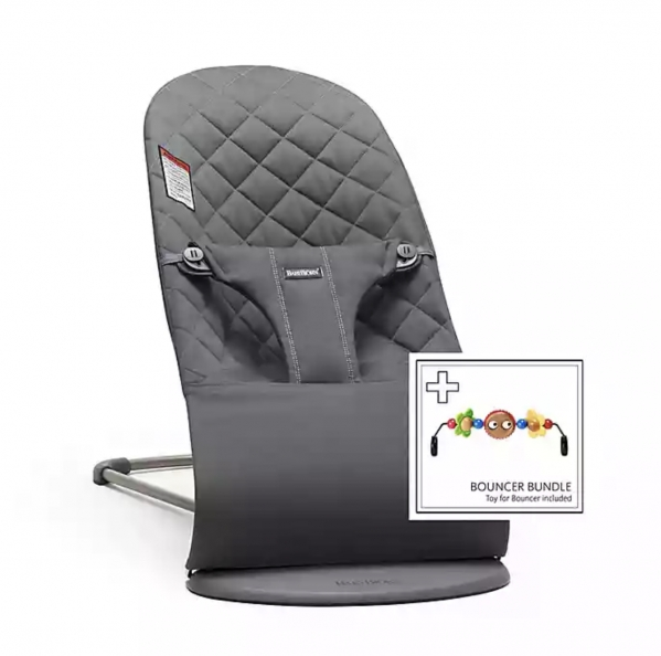 BabyBjorn Bouncer Seat