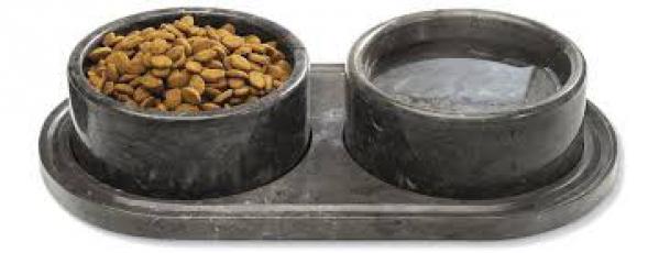 BabyQuip - Baby Equipment Rentals - Pet bowls - Pet bowls -