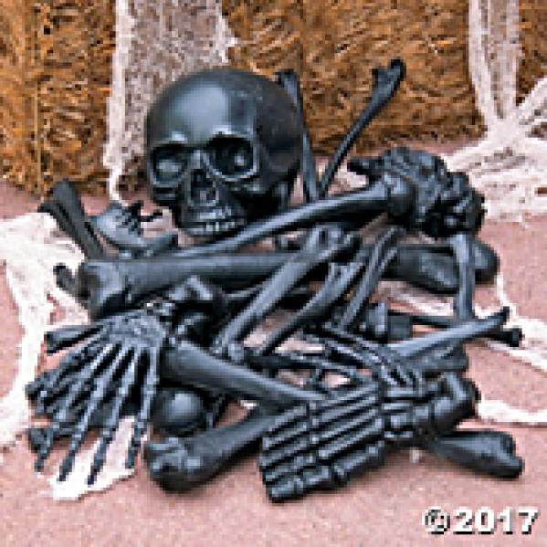 BabyQuip - Baby Equipment Rentals - bag of bones - bag of bones -