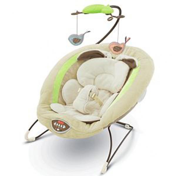 BabyQuip Baby Equipment Rentals - Bouncer Seat - Stacy Jackson - Boston, Massachusetts