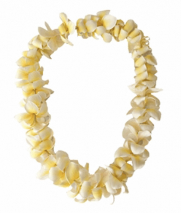 BabyQuip Baby Equipment Rentals - Add on item- Lei Greeting - Ashlee Westmoreland - Oahu, Hawaii
