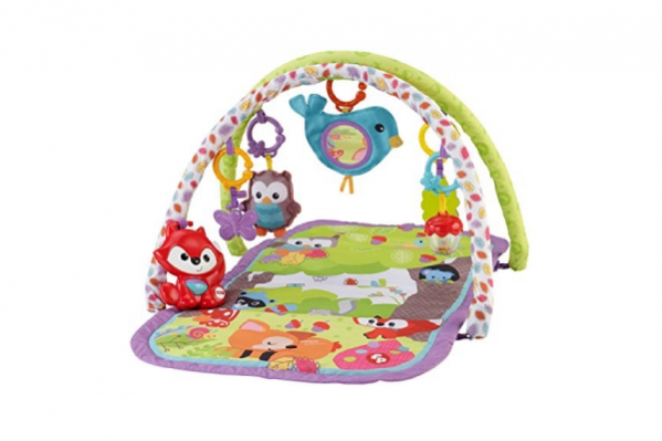 BabyQuip - Baby Equipment Rentals - Infant Play Mat/Activity Gym - Infant Play Mat/Activity Gym -