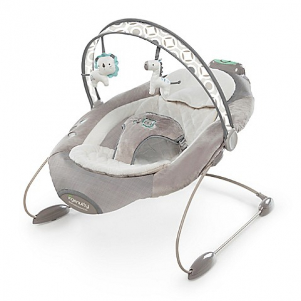 BabyQuip Baby Equipment Rentals - Bouncer Seat - Mandy Ischy - Dallas, Texas