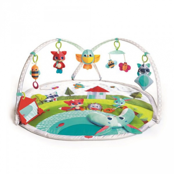 BabyQuip - Baby Equipment Rentals - Tiny Love Play Mat - Tiny Love Play Mat -