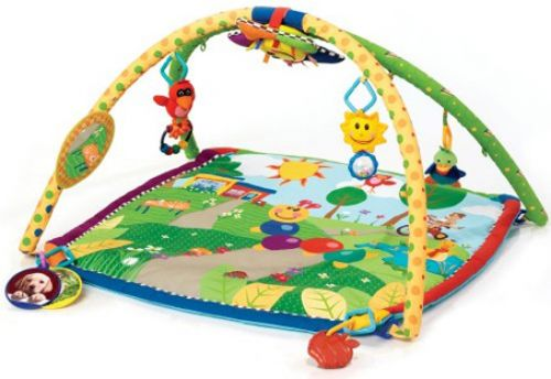 BabyQuip - Baby Equipment Rentals - Activity Gym—Baby Einstein Caterpillar - Activity Gym—Baby Einstein Caterpillar -