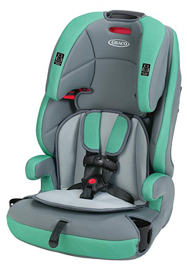 BabyQuip Baby Equipment Rentals - Harness Booster Car Seat - Brandi Lefebvre - Monterey, California