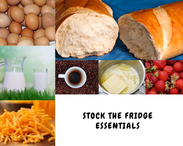 BabyQuip - Baby Equipment Rentals - Stock The Fridge Essentials - Stock The Fridge Essentials -