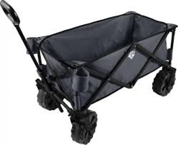 BabyQuip - Baby Equipment Rentals - Wagon Rental - Wagon Rental -