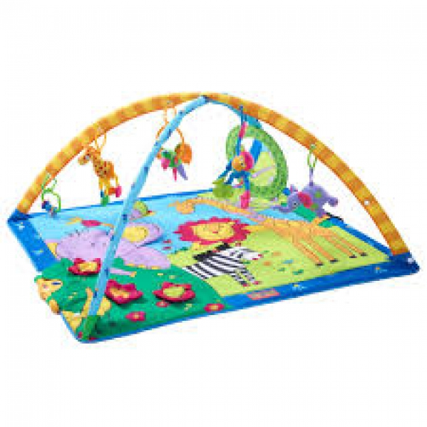 BabyQuip - Baby Equipment Rentals - Baby Gym & Play Mat - Baby Gym & Play Mat -